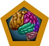 Brain Section Icon