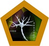 Neurons Section Icon
