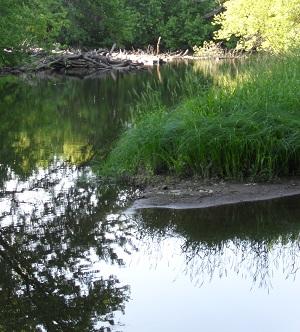 Rum River at Beaver Dam