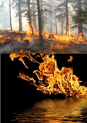 Forest and Lake Fire