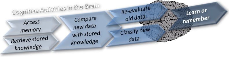 Cognitive activities in the brain