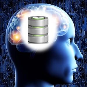 Disk Brain
